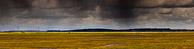 Elmley Panorama - Isle of Sheppey, Kent, West London Birders